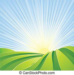 azul, idyllic, campos, sol, céu, raios, verde