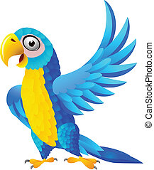 azul, macaw, caricatura