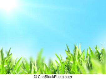 azul, natureza, céu, ensolarado, obscurecido, experiência verde, capim