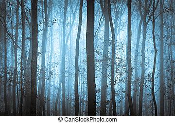 azul, spooky, árvores, escuro, nevoeiro, forrest