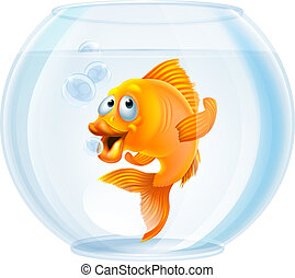 bacia goldfish, caricatura