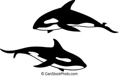 baleia, assassino