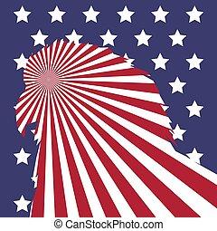 bandeira americana, calvo