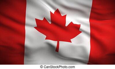 bandeira, canadense, looped., hd.