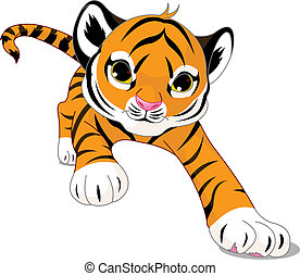 bebê, executando, tiger