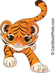 bebê, tiger, crouching