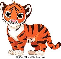 bebê, tiger