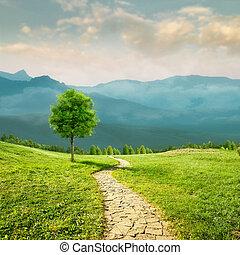 beleza natural, sazonal, health., estrada, transparente, prado, ar, fundos