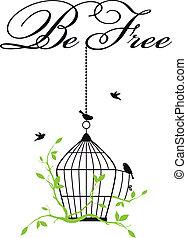 birdcage, abertos, pássaros, livre