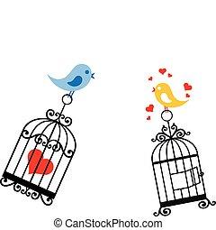 birdcage, ame pássaros