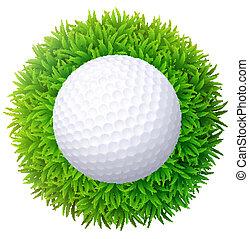 bola, golfe, isolado, experiência., grass., verde branco