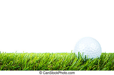 bola, golfe, sobre, experiência verde, branca, capim