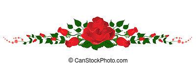 bonito, buquet, rosas