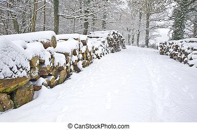 bonito, corte, empilhado, inverno, neve, profundo, cena, virgem, floresta, fresco, caminho, lados, madeira