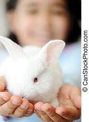 bonito, cute, animal estimação, criança, bunny easter, feliz