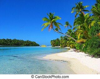 bonito, ilha, aitutaki, um pé, cozinhe ilhas, praia