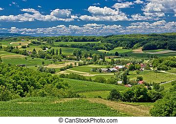 bonito, paisagem, primavera, verde, tempo, paisagem