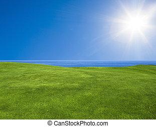 bonito, paisagem verde