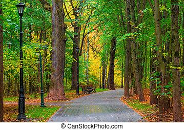 bonito, pessoas cidade, não, parque, outono