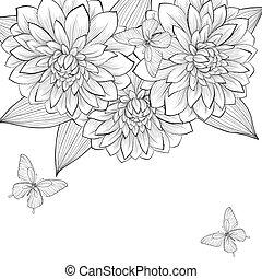 bonito, quadro, borboletas, experiência preta, monocromático, dahlia, flores brancas
