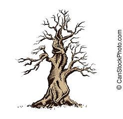 bonsai, arte, illustration., árvore, vetorial, silueta
