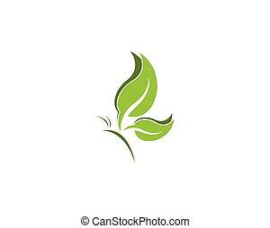borboleta, folha, desenho, modelo, logotipo, verde