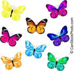 borboleta, jogo, ícone