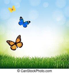 borboleta, primavera, paisagem