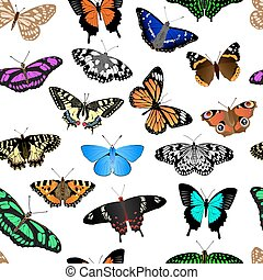borboleta, repetindo, fundo
