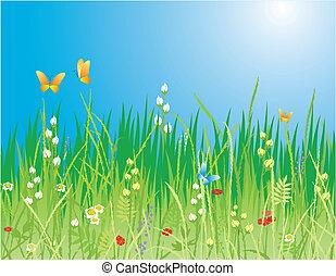 borboletas, capim, -, flores, vetorial, experiência., &, primavera