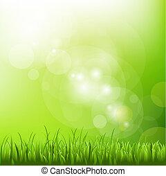 borrão, fundo, capim, verde