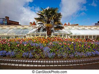 botanica, belfast, jardins