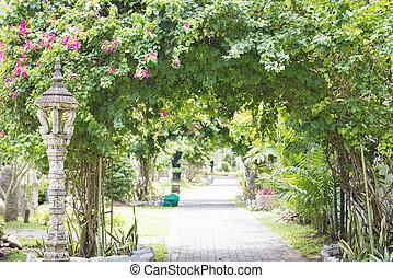 botanica, sombrio, jardim, passagem