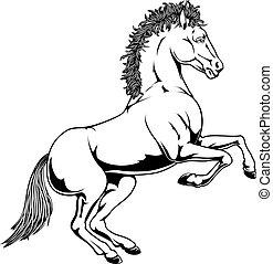 branca, cavalo preto, ilustração