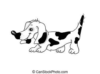 branca, experiência., vetorial, cão, illustration., bassê