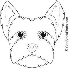 branca, oeste, altiplano, vetorial, terrier, fácil, cão, caricatura, coloração, isolado, fundo, illustration.