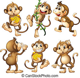 brincalhão, selvagem, macacos