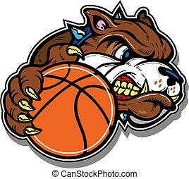 buldogue, basquetebol, má
