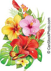 buquet, tropicais, flowersv