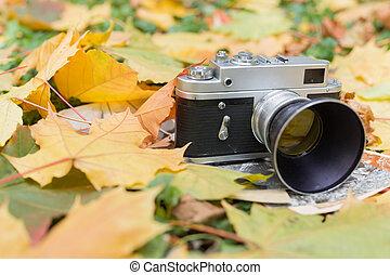câmera, cima, folhas, antigas, fim, fotografias, outono