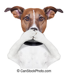 cão, boca, cobertura