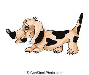 cão, illustration., bassê, vetorial, vermelho, experiência.