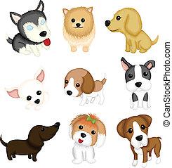 cão, raças