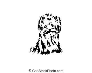 cão, vetorial, mão, terrier, desenho, engraçado, raça, sentando, esboço, yorkshire