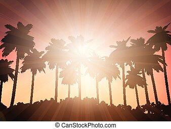 céu, árvore, contra, palma, pôr do sol, paisagem
