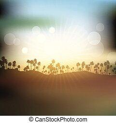 céu, árvores, silhuetas, palma, contra, pôr do sol