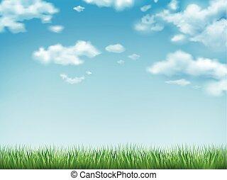 céu azul, capim, campo verde