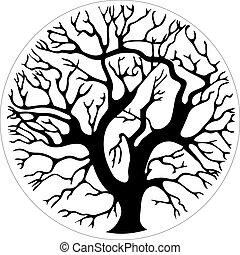 círculo, árvore