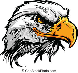 cabeça, ilustração, águia, vetorial, gráfico, mascote, calvo