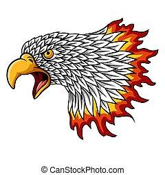 cabeça, mascote, águia, chamas, caricatura